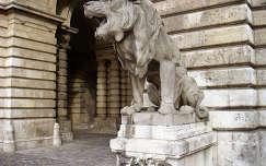 Kőoroszlán a Budai várban, Budapest, Magyarország