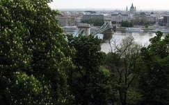 A Lánchíd, háttérben a Parlament, Budapest, Magyarország
