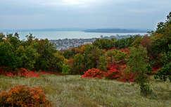 balaton tó magyarország ősz