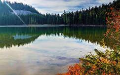 Fehér-hágó, Alaszka