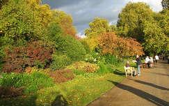Londoni park 2006