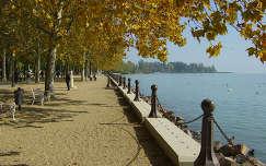 magyarország ősz pad kertek és parkok tó balaton