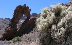 Lyukas szikla