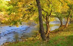 Őszi folyópart