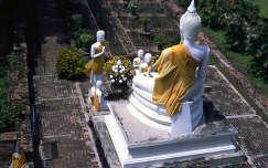 Buddha szobor, Ayutthaya