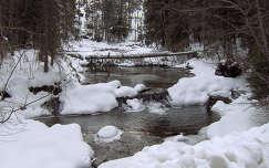 A patak télen, Magas-Tátra, Zdiar környékén, Szlovákia