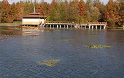 Hévízi tó ősszel