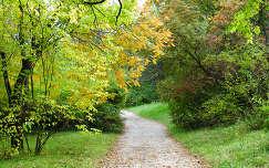 Vácrátót, őszi út