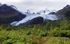 Worthington Glacier, Alaszka