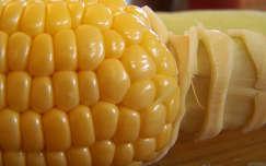 Főzni való kukorica - nyáron a legjobb csemege :)