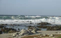 Monterey ,USA