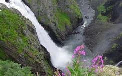 skandinávia vadvirág vízesés norvégia