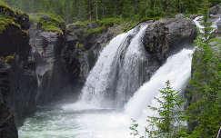 skandinávia vízesés kövek és sziklák norvégia erdő
