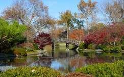 Japánkert őszi színekben