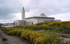 Mecset, Karthágó, Tunézia