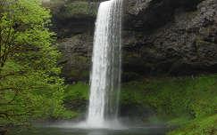 Silver Falls Állami Park, Oregon, USA
