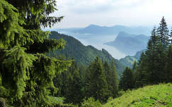 Kilátás a Pilátus hegy oldaláról, Svájc