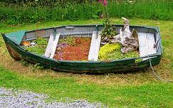 skócia vadvirág csónak