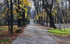 Kolozsvár, Séta-tér részlet, Erdély