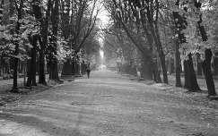 Kolozsvár, Séta-tér, Erdély