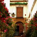 Córdoba, Espana, un patio cordobés