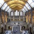 Természettudományi Múzeum - London