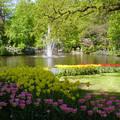De Keukenhof, Lisse - Holland