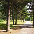 Finnország, park Helsinkiben