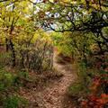 Eger-ősz