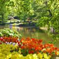Holland , Keukenhof