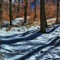 Tél a Forrásvölgyben (Bükk)