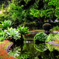 Palheiro Kert, Madeira