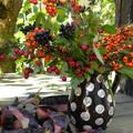 őszi csokor