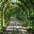 Linderhof kastély park,Bajorország