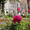 GRANADA-SPAIN, Alhambra Gardens