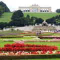 B�cs,Sch�nbrunni kast�ly parkja a Gloriettel,Ausztria