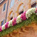 Padovai balkon