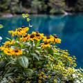 Blausee - Svájc