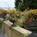 Mainau virágsziget Németország