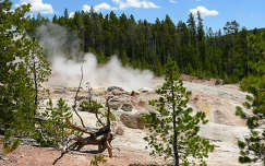 USA,Yellowstone National Park