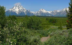 USA,Wyoming,Grand Teton National Park