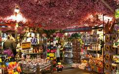 Amsterdam, Flowermarket at the Singel