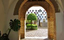 CÓRDOBA-SPAIN, PATIO-ZOCO