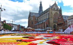 HAARLEM - HOLLAND, FLOWER CARPET AND THE ST.BAVO CHURCH