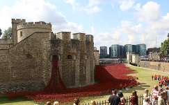 Tower of London, Poppies, London