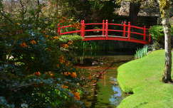 The Irish National Stud's Japanese Gardens