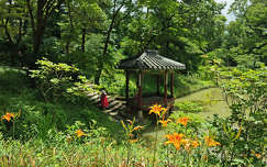 Koreai kert (Changdeokgung, Secret Garden)
