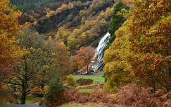Powerscourt Waterfall.Ireland