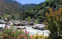 Kaweah River, California, USA